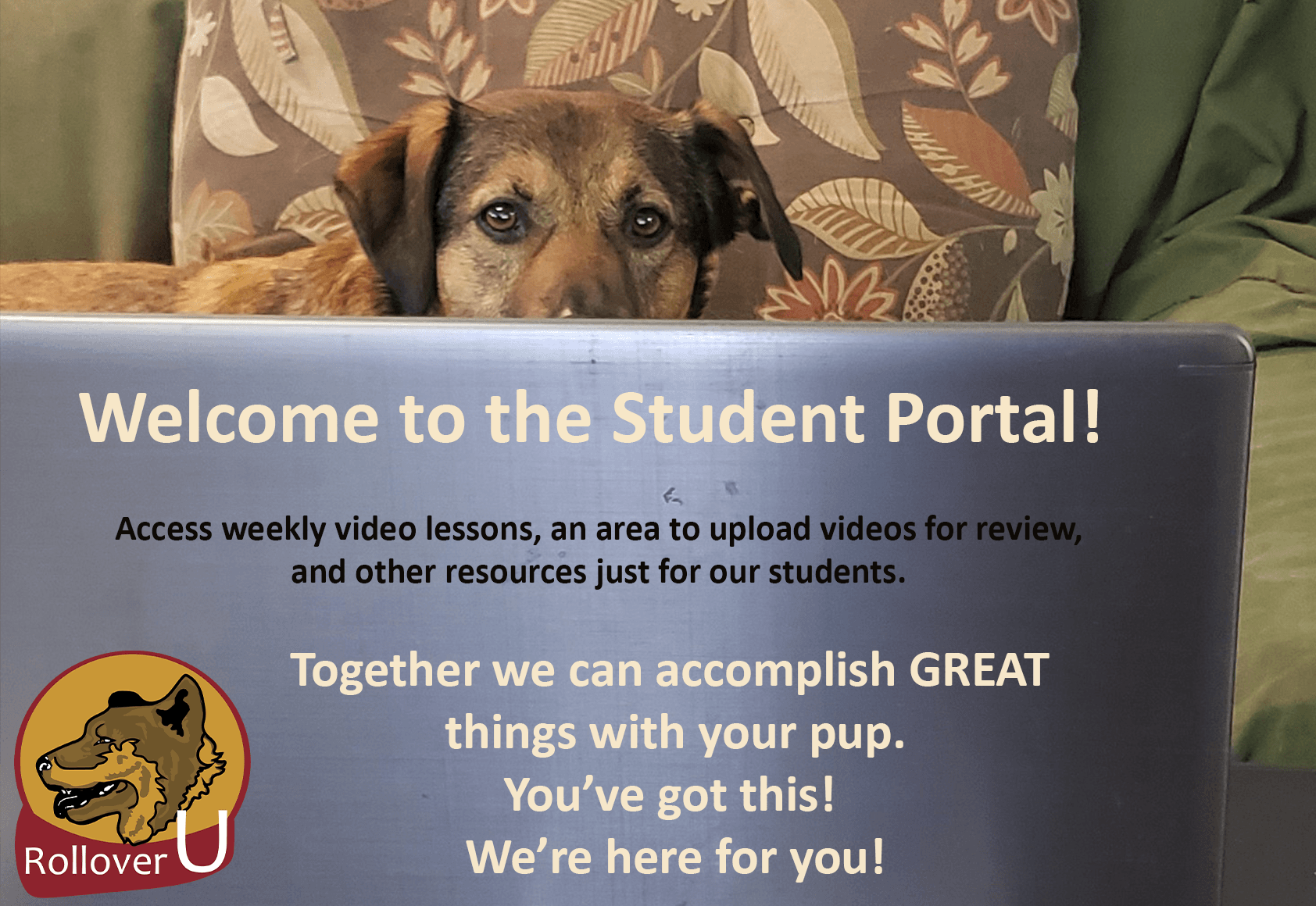 Welcome to the Student Portal